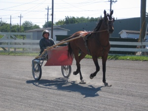 Jimmy Smith, 80, pacing his horse, Dr. Decimeter